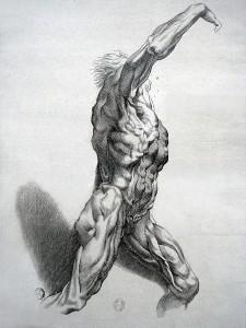 « Écorché », burin (H. 33 cm ; l. 21,8 cm) réalisé d'après Pierre Paul Rubens après 1640 par Paul Pontius. – Gravure N° SNR - 3 PONTIUS de la Bibliothèque nationale de France de Paris. Photographie réalisée lors de l'exposition temporaire l'Europe de Rubens - Musée du Louvre (Lens).