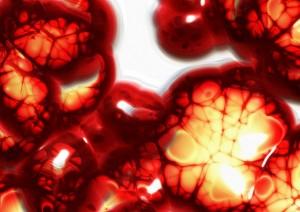 cells-75305_640